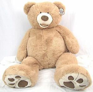 photo of teddy bear